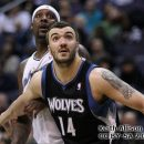 Pekovic Wolves